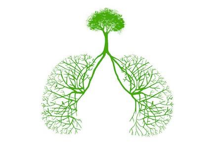 肺部肿瘤百科